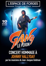 CONCERT HOMMAGE A JOHNNY HALLYDAY